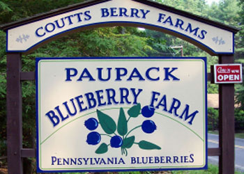 Paupack Blueberry Farm, James Manning B&B, Honesdale, PA